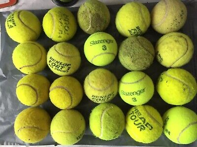 20 Used Tennis Balls For The Dog