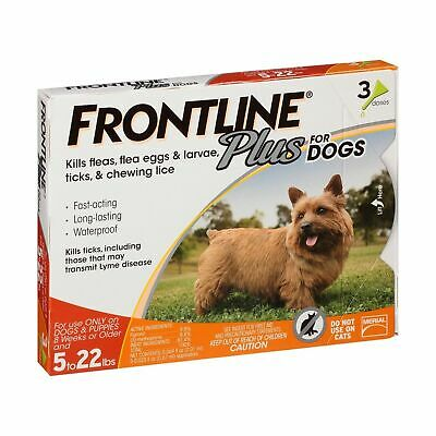 3 Doses Frontline Plus for Dogs Small Dog (5-22 pounds) Flea and Tick Treatment