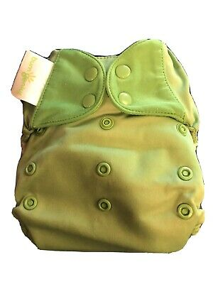 Bumgenius All In One Cloth Diaper - Retired Ribbit