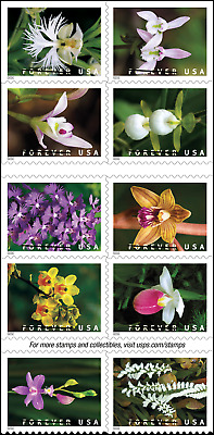 #5445 - 5454 2020 Orchids Booklet Block/10  - MNH