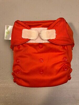 BumGenius All In One Cloth Diaper Sassy