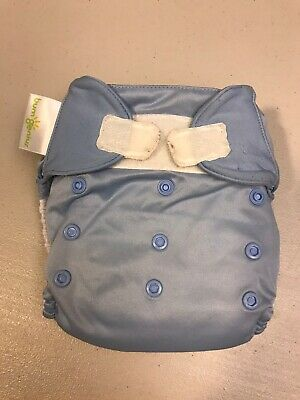 BumGenius All In One Cloth Diaper Twilight