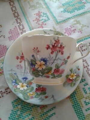 Antique Aynsley England Watercolor Garden Tea Cup And Saucer ~ Used