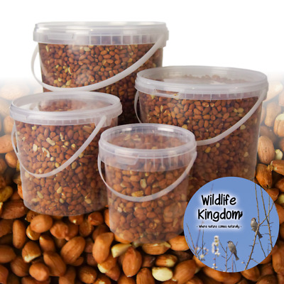 Buckets Tubs Premium Peanuts Wild Bird See Food Nuts High Protein Birds Squirrel