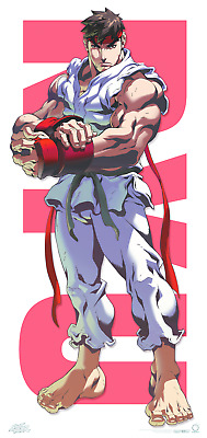 Street Fighter RYU Door Poster - Udon (RARE & OUT OF PRINT!!)