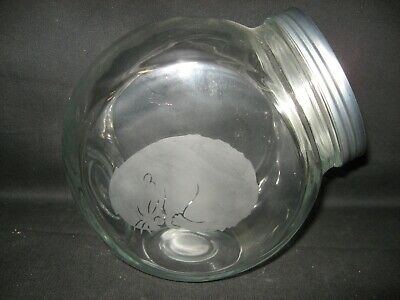 New Etched Hamster Glass Cookie Candy Treat Storage Jar Canister
