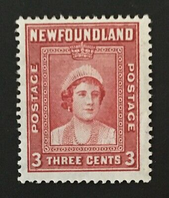 Newfoundland Stamp 246 Perf 13.5 MH
