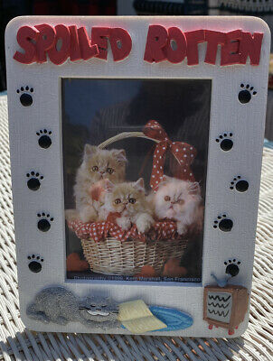 "3-D Spoiled Rotten Cat Snoozing W/Paw Prints Picture Ceramic Frame 3.25"" x 5"""