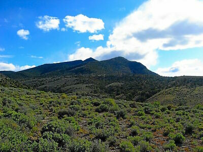 $1 Reserve 41 Ac Humboldt County Nevada Directly Adjacent To 660+ Ac Of Blm Land