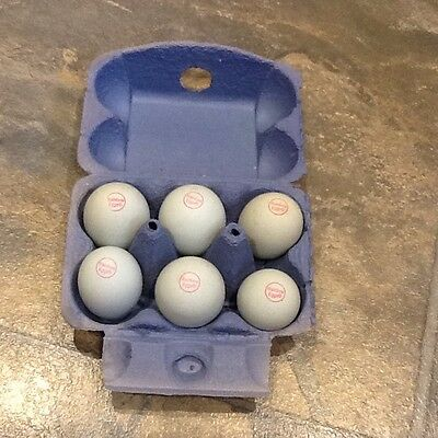 SOLD OUT 10 Heavy Duty BLUE Half Dozen Rainbow Cardboard Egg Boxes (M/L) Pack
