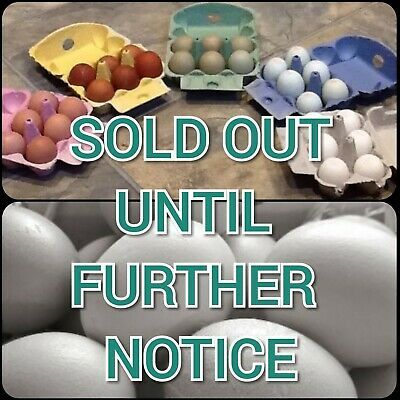 SOLD OUT 20 Heavy Duty YELLOW Half Dozen Rainbow Cardboard Egg Boxes (M/L) Pack