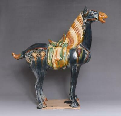 Old Chinese Tang Tri-Color Glazed Ceramics State Horse 42Cm (E66)