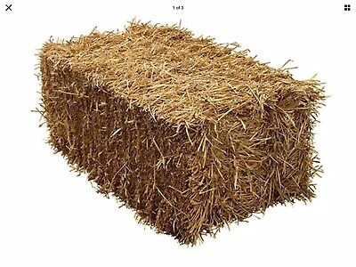 Straw Bale Standard Bales of Wheat Straw Bedding, Horse Bedding Strawberry Cover
