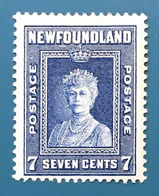 Lot12 Newfoundland Stamp 248 Perf 13.5 MH