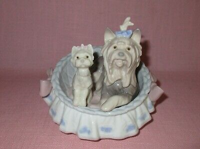 Lladro Spain Porcelain Figurine Our Cozy Home Yorkie Yorkshire Terriers 6469
