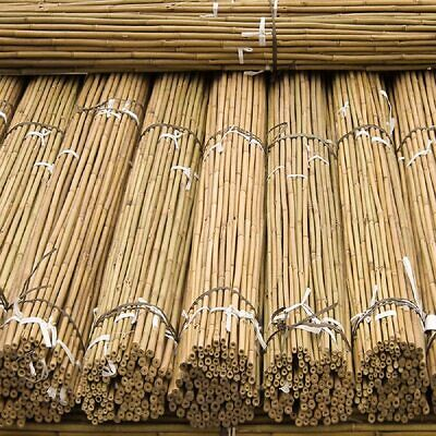 Strong Heavy Duty Professional Bamboo Plant Support Garden Flower Canes  3ft-4ft