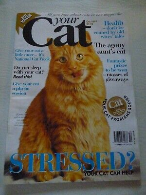 Your Cat Magazine - Vintage From October 1997 - Very Good Condition