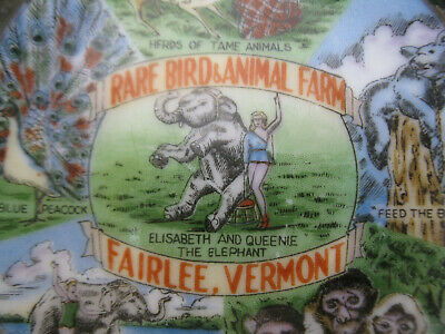 Vintage Fairlee Vermont RARE BIRD & ANIMAL FARM Advertising Plate Collectible