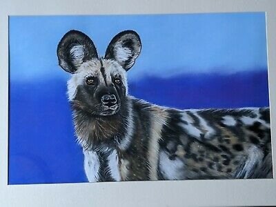 Original Pastel Drawing Of Wild African Hunting Dog By Artist Nigel Chandra 2016