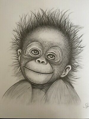 Orangutan Monkey Ape Baby Drawing Art Gift A4 *Signed Original By S Tipple 2020*