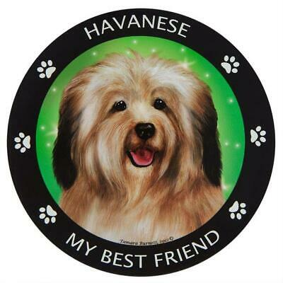 Havanese Car Magnetic My Best Friend Circle Magnetic Pedigree Dog USA