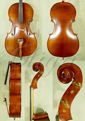 Professional 7/8 'gama' Flamed Antiqued Cello Code: B6149