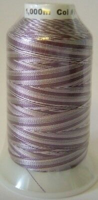 Embroidery Machine Thread Rayon 1000 metre V. PLUM Variegated A921.0216
