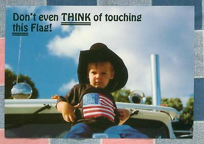 50 Postcards Little Lee Comic Trucking Don't Even Think of Touching This Flag
