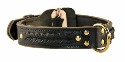 Dean & Tyler Braided Heaven Leather Dog Collar w/ Solid Brass Hardware