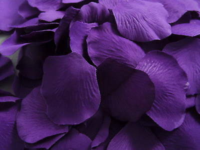 500 cadbury PURPLE THICK SILK ROSE PETALS/LARGE QUALITY PIECES/confetti/wedding