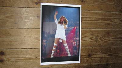 Celine Dion New Live on Stage White Dress POSTER