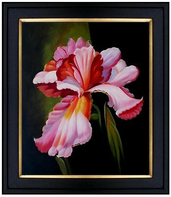 Framed Quality Original Hand Painted Oil Painting Two-Tone Irises 20x24in