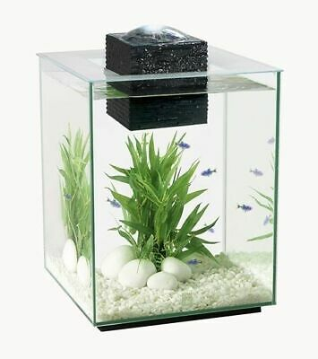 Fluval Chi 19L Aquarium With Led Light Lighting Latest Version Hagen Fish Tank