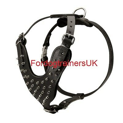 New Spiked Padded  Leather Dog Harness H9 for Pitbull