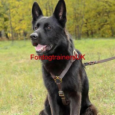 Luxury  Leather  Dog Harness H7 for German Shepherd