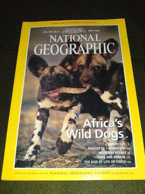NATIONAL GEOGRAPHIC - AFRICA'S DOGS - May 1999 Vol 195 #5