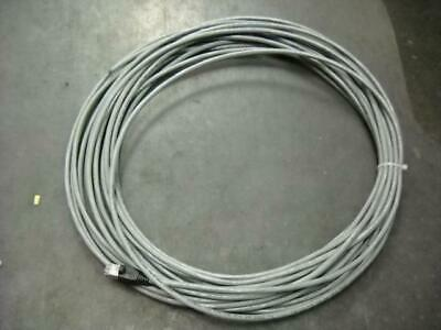 American Cable 110B-5GRY-008N Standard Cat-5 Patch Cord