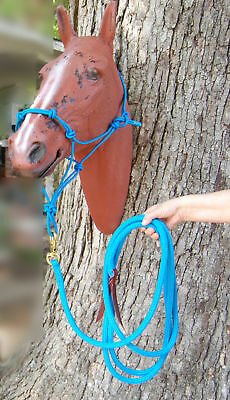 14' Lead Rope With Bull Snap & Stiff Training Halter
