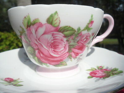 SHELLEY MULDER AND ZOON  PINK   MOSS  ROSE  HENLEY SHAPE CUP &  SAUCER   # 2424