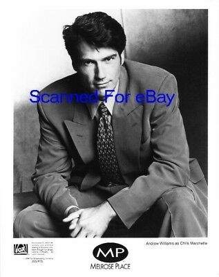 ANDREW WILLIAMS Terrific TV Photo MELROSE PLACE