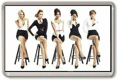 The Saturdays Fridge Magnet #2