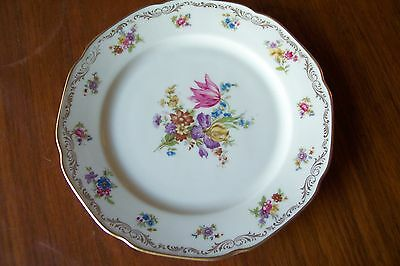 Tirschenreuth Bavaria Salad Plate The Newton #240 US Zone Rose Multi Floral