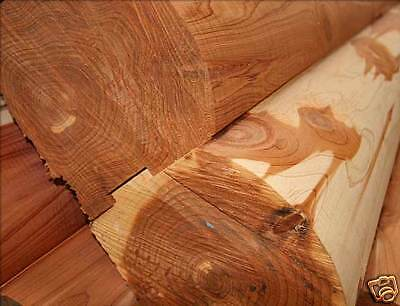 Cedar Logs for Log Homes 6x6 D Logs 8 FT - WE SHIP FREE SAMPLES