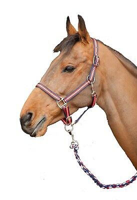 Red, white & blue matching headcollar & rope set