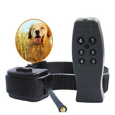 Small/medium/big stubborn remote control dog training collar-rechargeable