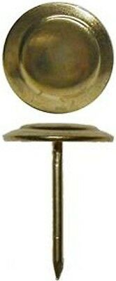 "Decorative Jenny Lind Trunk Nail - 3/4""  Clavos  D3530"