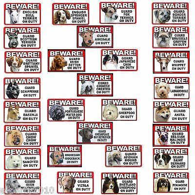 BEWARE OF GUARD DOG PLASTIC SIGN ~ Party Supplies Poster You Pick Your Breed!