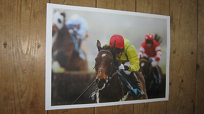 Sizing Europe Horse Racing Legend New Flt POSTER