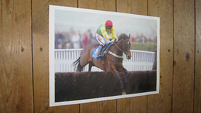 Sizing Europe Horse Racing Legend New Jump POSTER