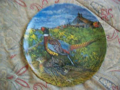 Knowles The Pheasant Upland Birds of North America Wayne Anderson Plate